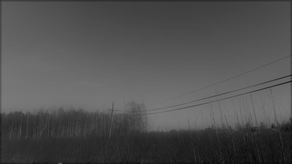 DSC_0016-1.jpg